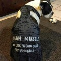 Muscle Tank Top Dog