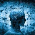 9 HÁBITOS QUE DETERIORAN LAS NEURONAS Y AFECTAN LA SALUD CEREBRAL