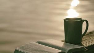 10 Conselhos Para o Novo Convertido - Conselheiro Cristão
