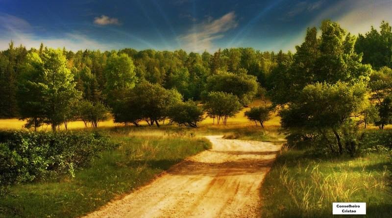 Não desista de sua caminhada - Conselheiro Cristao