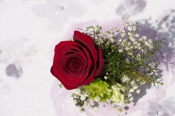 Feliz dia das mães - Conselheiro Cristao