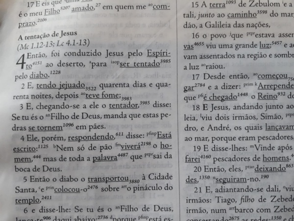 Versículo Para Novo Convertido Ler em Mateus - Leia todo o capítulo de Mateus