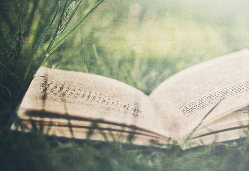 tumblr_static_open-book-103823