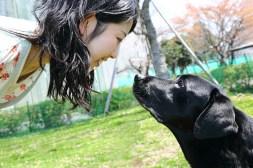 dog bonding