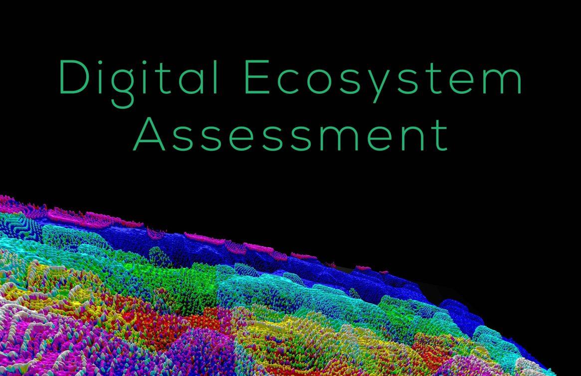 digital eco assess 082321 v3