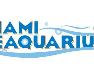 TOTALLY TEACHERS WEEKEND! AT MIAMI SEAQUARIUM