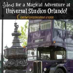 Ideas for a Magical Adventure at Universal Studios Orlando!