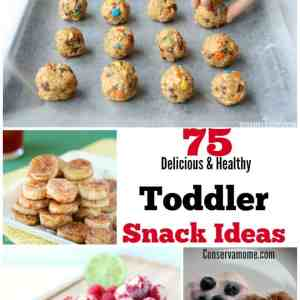 75 Delicious & Healthy Toddler Snack Ideas