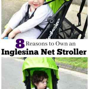 8 Reasons to Own an Inglesina Net Light Weight Stroller.
