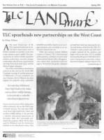 LandMark Spring 2001
