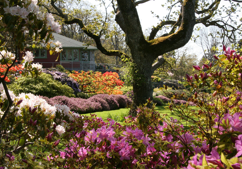 Abkhazi Garden The Land Conservancy Of Bc