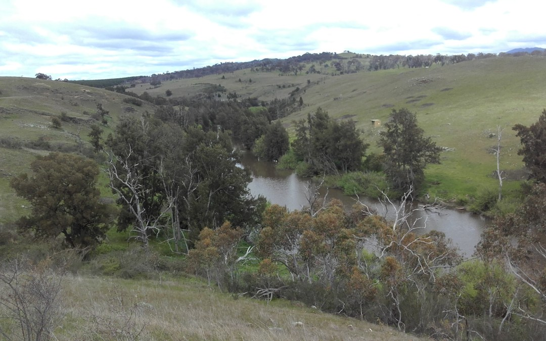 MEDIA RELEASE: Environment funding welcome and necessary
