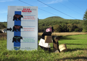 Bear-o-Meter sign posted in agricultural field with arrows indicating risk of bear conflict