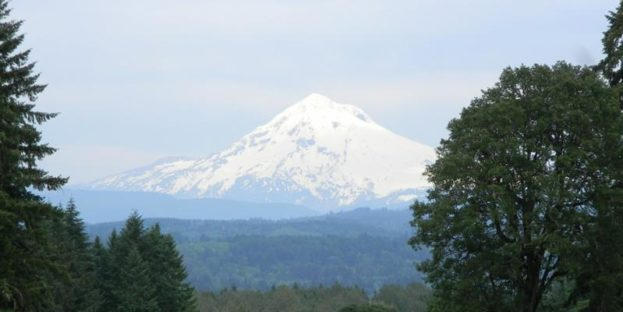 800x400 Mt Hood from Libery Natural