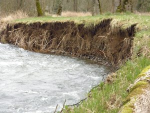 Erosion from streambanks, agriculture, and construction can contaminate source water.