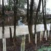 Stormwater flow into Deep Creek