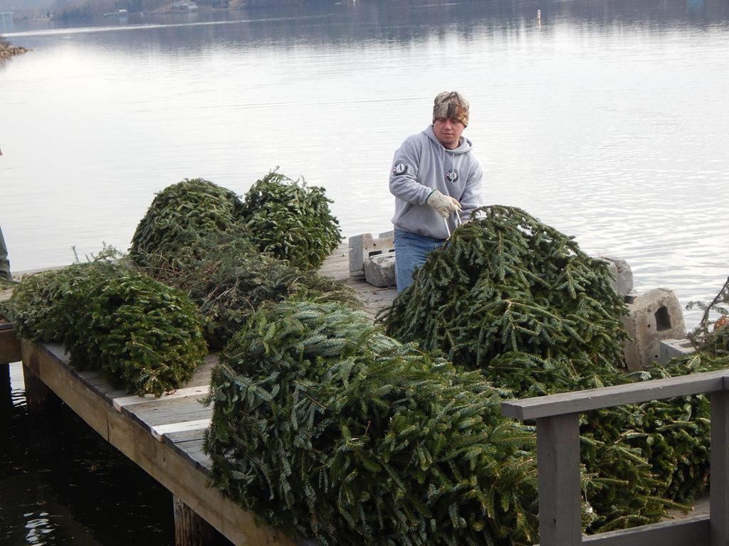 Christmas Trees For Fish Habitat