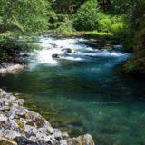 Clackamas-River-wiki-commons.jpg