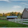 Clackamas SWCD rural property by Jason