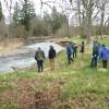 Milk Creek: At project site