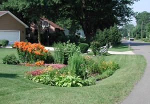 Rain gardens beautify home landscapes.