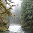 Molalla_River-2014-1200x600