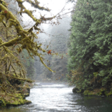 The Molalla River Watershed is one of ten watersheds in Clackamas County.