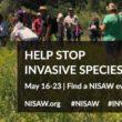 NISAW2 2020 800x400