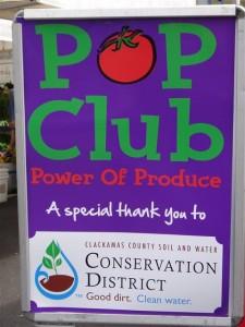 POP_Club