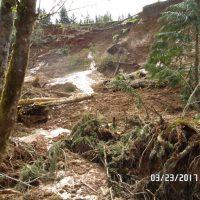 Debris torrent on steep slope