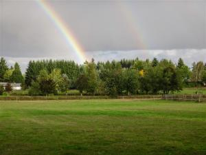 Farm and ranch succession planning can lead to a positive future for you and your family.