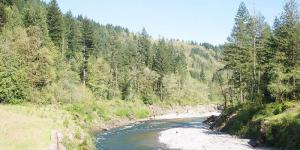 The Sandy River Watershed is on of 10 watershed in Clackamas County. (Photo: Sam Beebe)