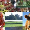 SaveTheDate-FarmSchool-featured1