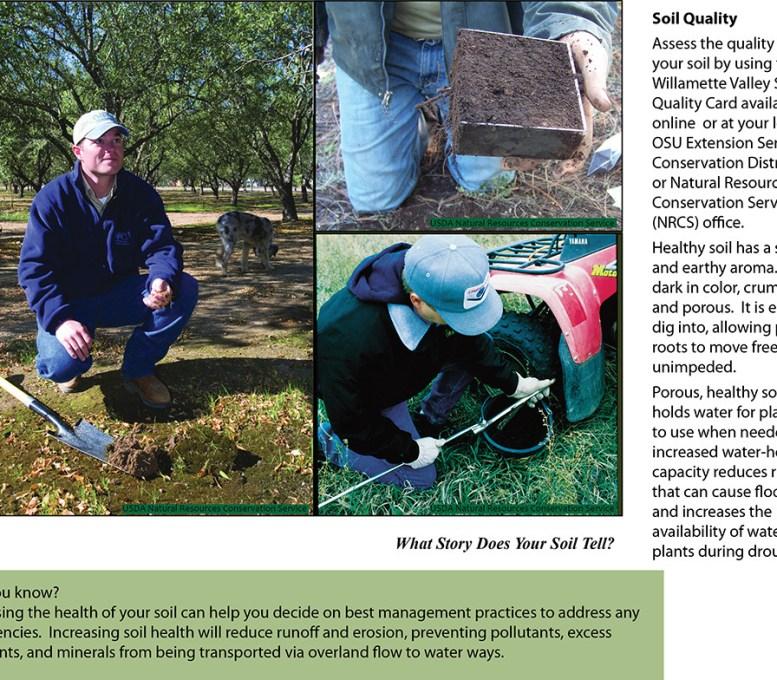 Soil Testing web