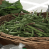 radish and green beans 800x400 2017