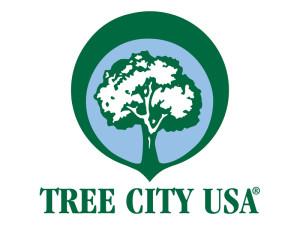 treecitylogo