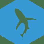 05-shark