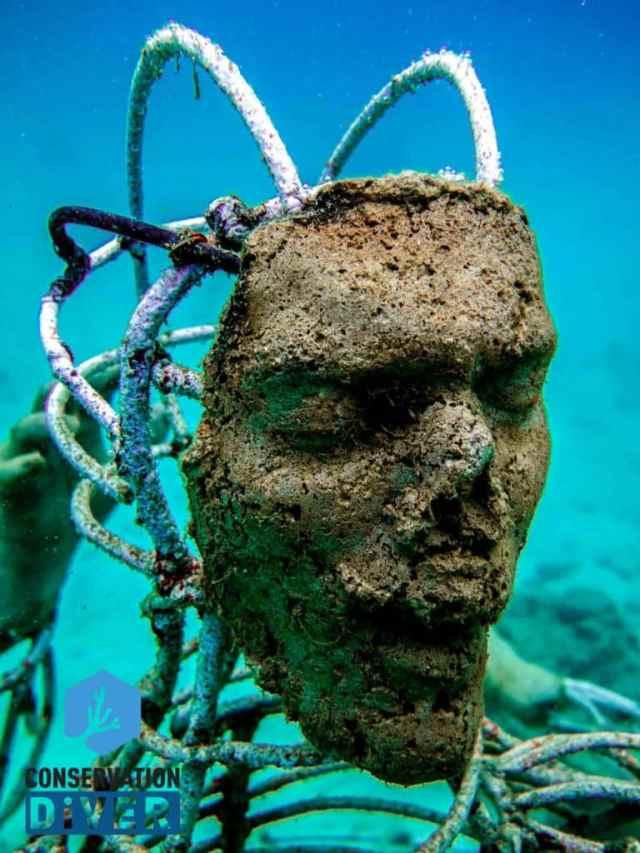 Underwater Electrified Art