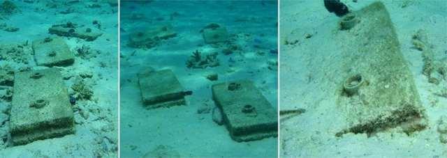 reef restoration fails