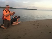 LMC S.W.I.M. participants help release hawksbill sea turtles at sunset. Padre Ramos Natural Preserve.