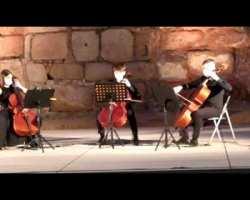 Participación en homenaje a los fallecidos por el Covid 19. Trío de cellos Rodrigo Blanco, Guillermo Escribano y Valentina de la Peña