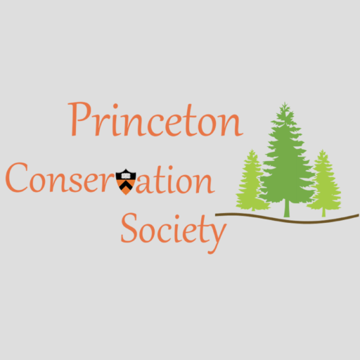 Princeton Sunda Rainforest Project – Princeton Conservation