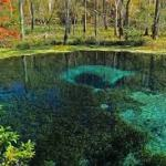 """Blue Hole"" - Ichetucknee Springs.  Twenty-feet down to the hole, which opens into a very large underground labyrinth.  A favorite location of experienced divers."