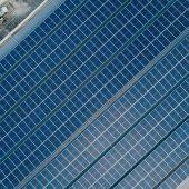 5 Reasons You Should Go Solar