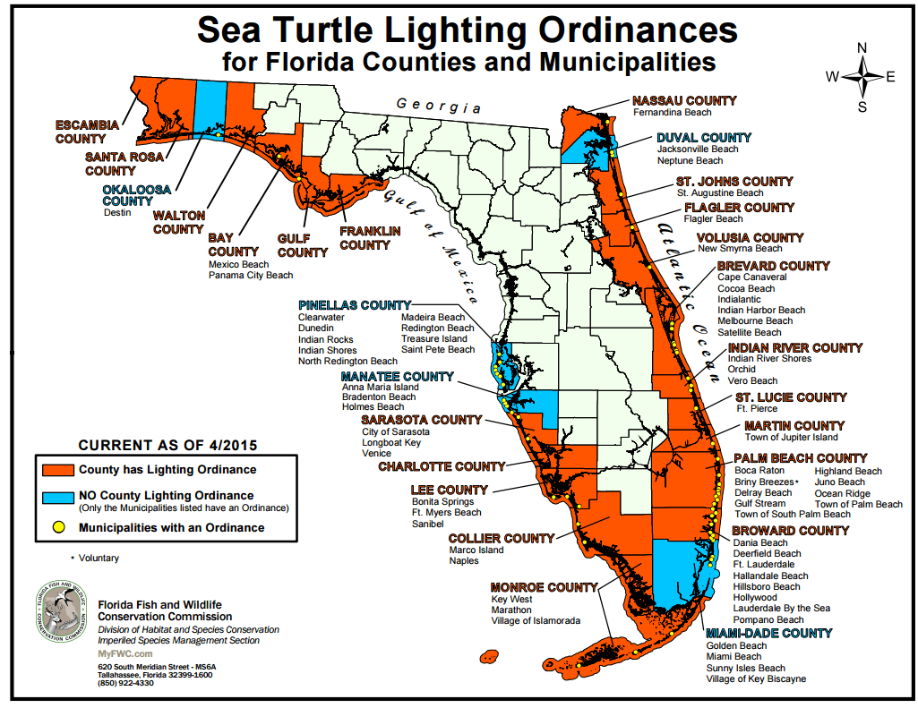 Saving Sea Turtles in Florida fwcordinances