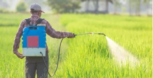 Does Roundup Cause Cancer Trial Begins Over Roundup Weedkiller Consider The Consumer