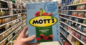 Mott's Fruit Snacks Class Action Lawsuit Was Filed consider the consumer