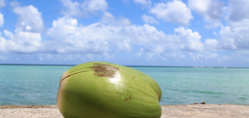 Naked Pure Coconut Water Class Action Lawsuit Consider The Consumer