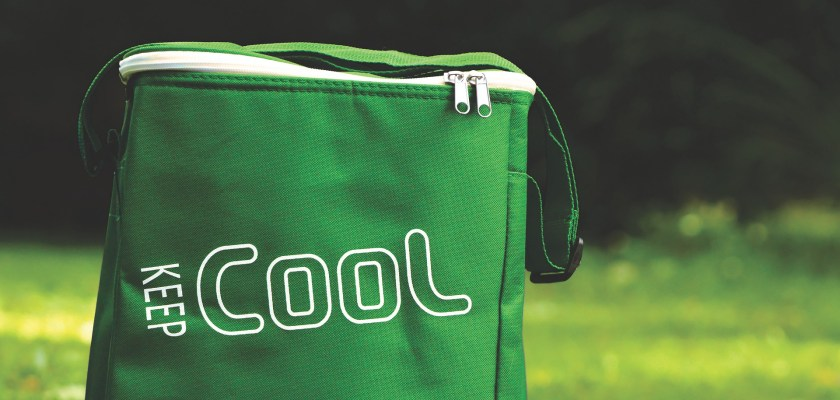 Igloo Cooler Class Action Lawsuit Consider The Consumer