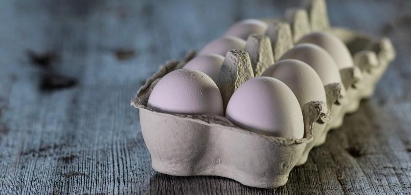 Hilly Acres Farm Eggs Recall Consider The Consumer
